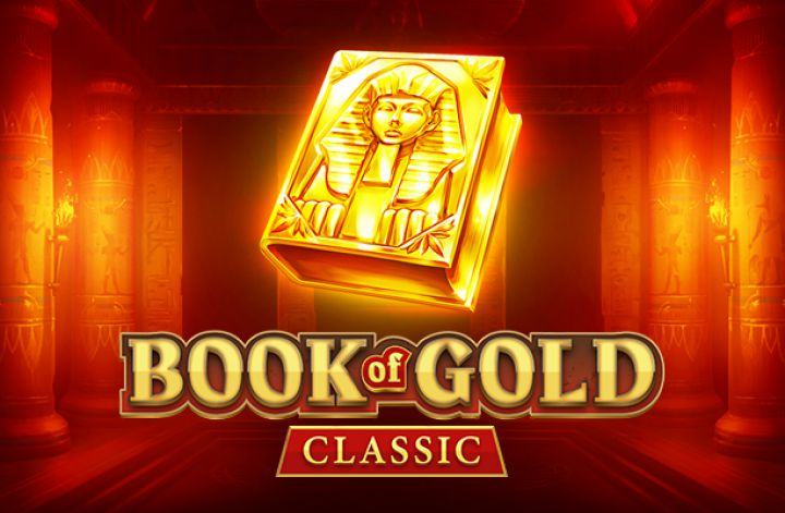 playson book of gold slot